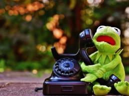 лягушонок звонит